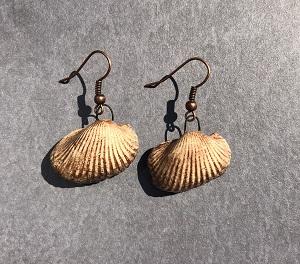 Medium brown ceramic shell earrings