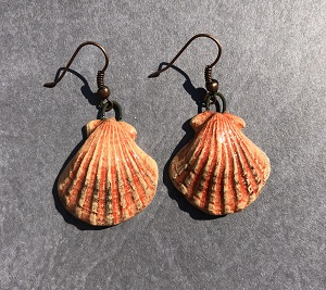 Clam shell earrings (Peach)