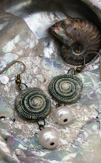 Coiled shell earrings